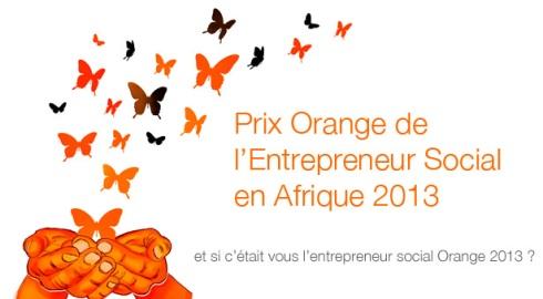 Gagnez 16.400.000F en participant au Prix Orange de l'Entrepreneur Social de l'Année 2013